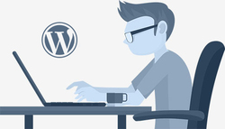 Hire WordPress Developer - The Brihaspati Infotech