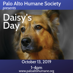 Daisy's Day presented by Palo Alto Humane Society