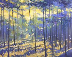 Nicholas Coley - Art Exhibition