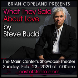 What They Said About Love by Steve Budd