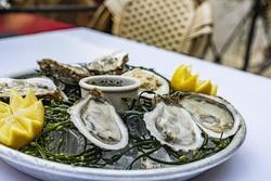 Left Bank Brasserie in Larkspur to Host Oyster Fête 2020