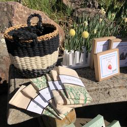 Spring Pop Up Marketplace & Plant Sale