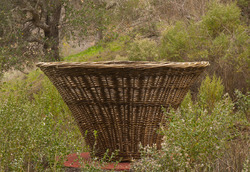 MARIN ART AND GARDEN CENTER PRESENTS BEHIND THE SCENES AT THE BASKETRY GARDEN