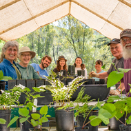Grow Redwoods for Coho Salmon: Nursery Volunteer Day