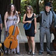 Labor Day Concert with Dirty Cello at Muir Woods Club